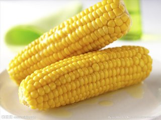 香甜玉米_特产