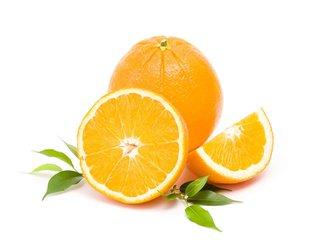 隆阳肚橙214