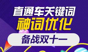 【备战双11】今晚直播直通车关键词神词优化