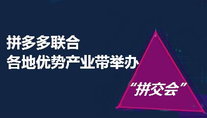"""拼多多上线""""拼交会"""" 超500万粉丝不雅看直播"""