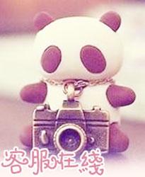 熊猫和相机