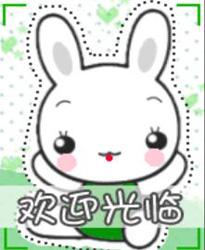 Q版小兔子