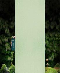绿色生态丛林背景图